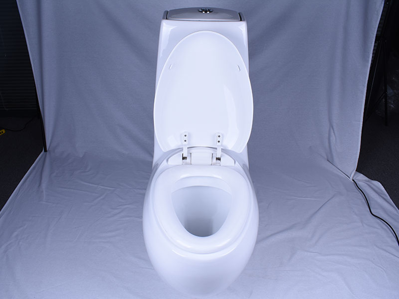 Easehome customized one piece toilet fast shipping bathroom-5