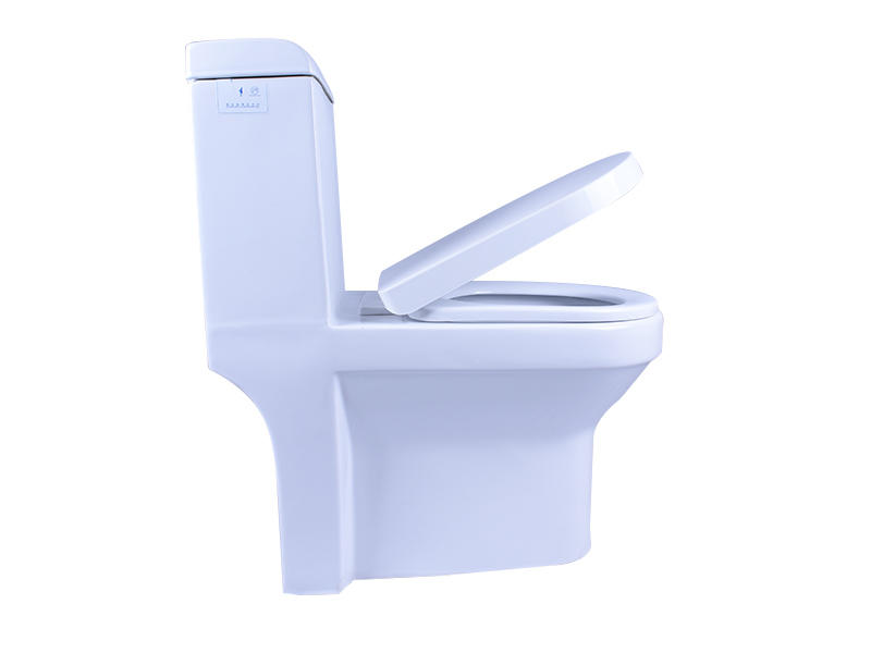 White Colored Ceramic Dual Flush 3/6L Toilet With Soft Closing Seat