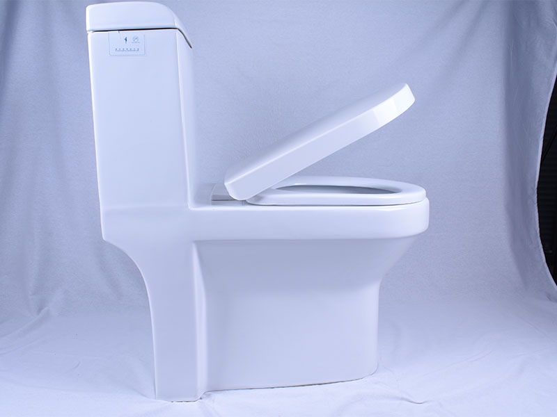 Easehome comfortable squat toilet S-trap bathroom-6