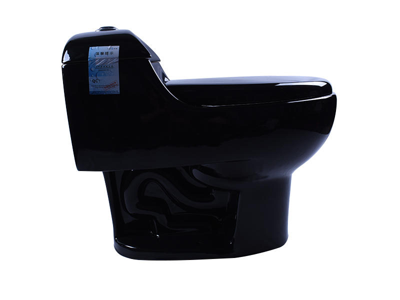 Black Porcelain Siphon Dual Flush Elongated Toilet WC With S-Trap 300 mm