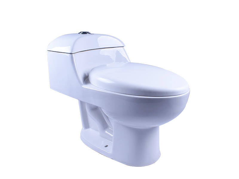 White One-Piece Toilet Dual Flush Elongated Toilet with Slow Down Seat Cover