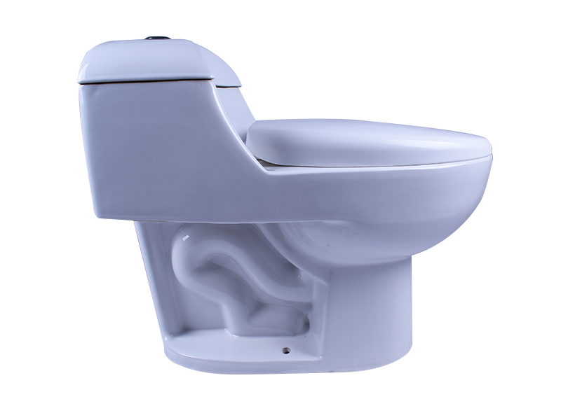 Easehome one piece one piece toilet fast delivery home-use-2