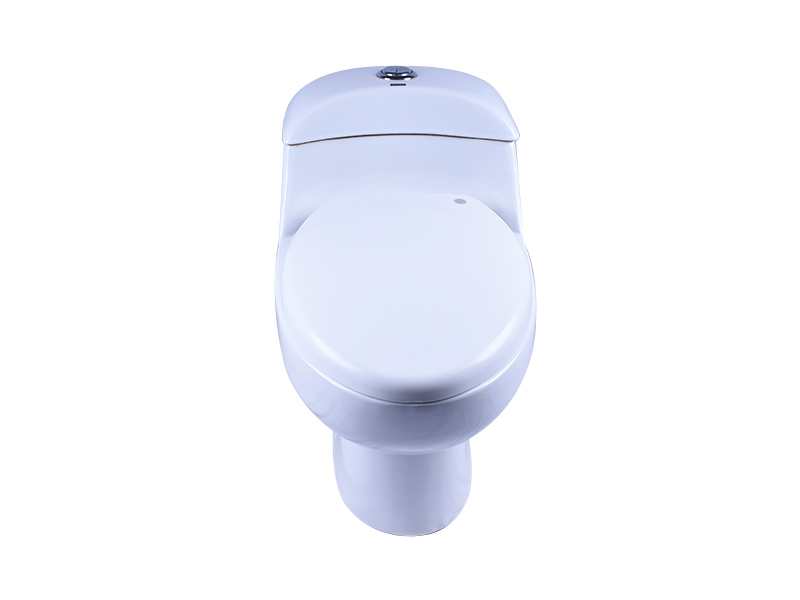 Easehome soft dual flush toilet fast shipping home-use-3
