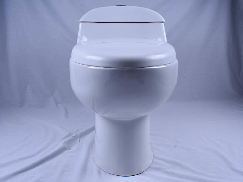 Easehome dual flush 2 piece toilet fast shipping bathroom