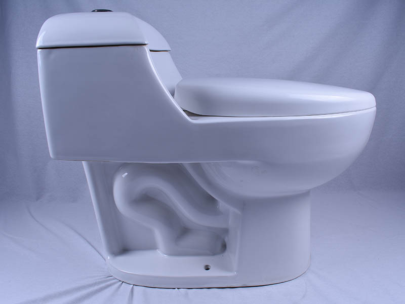 Easehome dual flush 2 piece toilet fast shipping bathroom-6