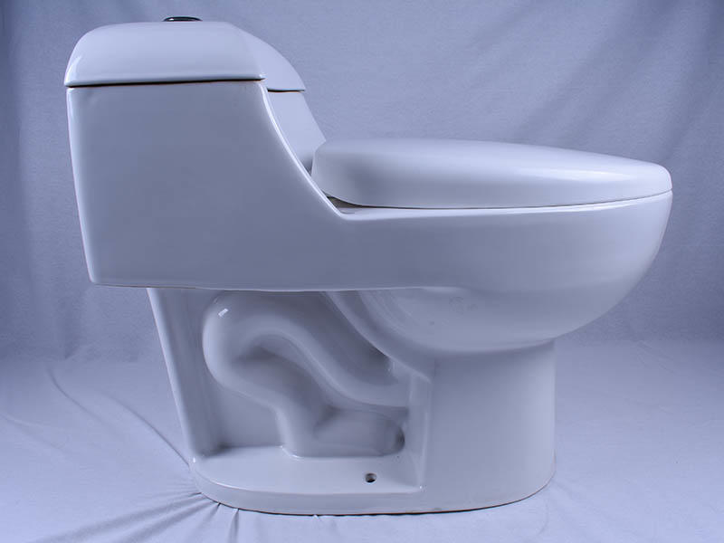 Easehome one piece one piece toilet fast delivery home-use