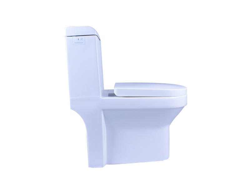 Easehome comfortable squat toilet S-trap bathroom-1