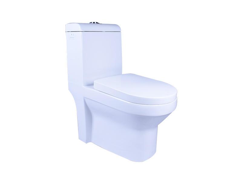 Easehome comfortable squat toilet S-trap bathroom-2