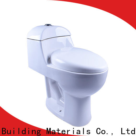 Easehome customized modern toilet fast delivery bathroom