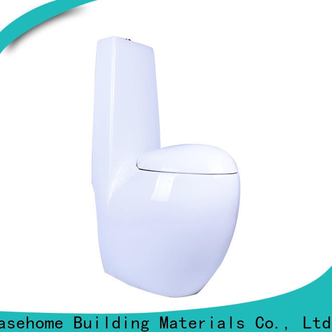 Easehome customized dual flush toilet more buying choices home-use